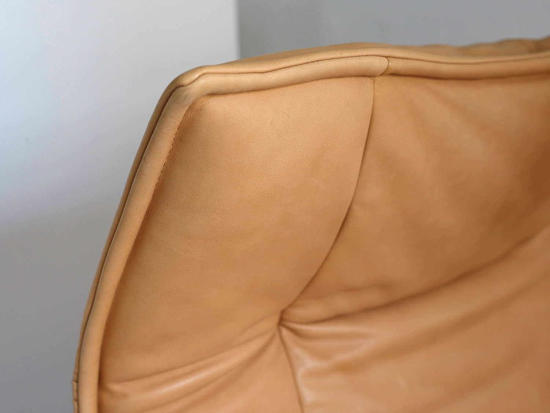 veranda-lounge-chair-by-vico-magistretti-image-05